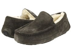 No results for Ugg ascot charcoal Ugg Ascot, Uggs, Sheepskin Slippers, Mr Men, Mens Slippers, Go Shopping, Charcoal, Slip On, Loafers