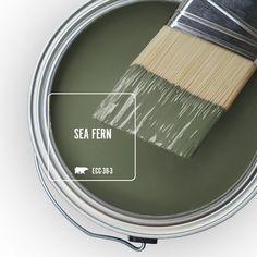 900 Dream Home Palette Ideas Palette Painting Tips Color Pallets