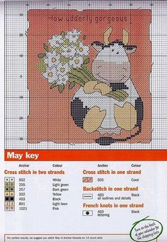 Mucca con fiori. Cow with flowers.