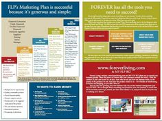 Marketing plan Forever Living Products, My Forever, Marketing Plan, You Changed, Success, How To Plan, Board, Life, Planks