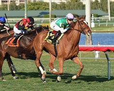 Suffused Shows Her Class in La Prevoyante  https://www.racingvalue.com/suffused-shows-her-class-in-la-prevoyante/