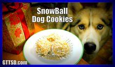 DIY SNOWBALL DOG COOKIES | Snow Dogs Snacks 40 | No Bake Dog Treats for ...