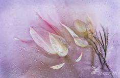 "Floral Fine Art ""Lilac Dreams""  Print on WaterColor Paper. Fine Art Photography. Unique Fine Art Artwork, Wall Art Decor, Abstract Art"