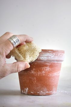 HOW TO INSTANTLY AGE NEW CLAY POTS. | The Art of Doing StuffThe Art of Doing Stuff