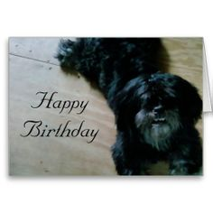 >>>This Deals          	LHASA APSO WISHES FOR A HAPPY BIRTHDAY GREETING CARDS           	LHASA APSO WISHES FOR A HAPPY BIRTHDAY GREETING CARDS today price drop and special promotion. Get The best buyHow to          	LHASA APSO WISHES FOR A HAPPY BIRTHDAY GREETING CARDS lowest price Fast Shippi...Cleck See More >>> http://www.zazzle.com/lhasa_apso_wishes_for_a_happy_birthday_card-137374954817791993?rf=238627982471231924&zbar=1&tc=terrest