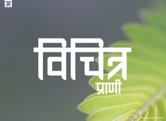 Ananda Chautari - Devanagari font free on Behance Slang Quotes, Funny Quotes In Hindi, Desi Quotes, Funny Attitude Quotes, Funny True Quotes, Badass Quotes, Sarcastic Quotes, Words Quotes, Funny Profile Pictures