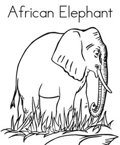 free printable africa animal giraffe pair coloring pages for kids