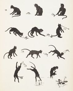 Cat playing with a frog by Theophile-Alexandre Steinlein - print