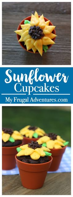 These fun sunflower cupcakes are simple to make, delicious and look so beautiful! Perfect for summer parties, baby showers, birthday parties or homemade gifts!