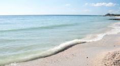 #Manatee County, #Florida. #Caretaker / #Caregiver needed in #Manatee County, #Florida. http://www.caretaker.org