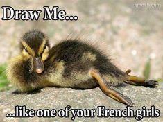 Cute duck http://ift.tt/2CiNuaC