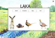 dopasuj Nature, Naturaleza, Nature Illustration, Off Grid, Natural