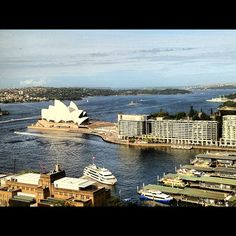 Sigh. Will never tire of this amazing view of the Sydney Harbour. - @chamorro_chica  #IGTravelBook #instagramtravel #travel