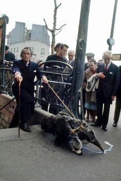 Salvador Dali and his pet anteater