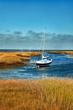 Cape Cod tidal marshes   ... in salt marsh, Wharf Lane, Yarmouthport, Cape Cod, MA, Massachusetts