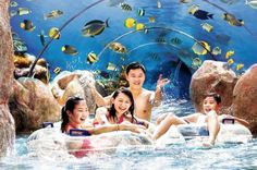 Skip the Line: Adventure Cove Waterpark Admission E-ticket Ready, set, slide! Get your fill of the park's hair-raising water rides before heading to the reef for interactive sea life encounter. Splash in gallons of fun with the park's exciting slides and tube rides. Try out aquatic daredevil activities such as the balance beam, tight rope, cargo net climb, and platform cliff jump.Experience an amazing ray encounter, snorkel over tropical fish, ride a leisurely tube through an ...