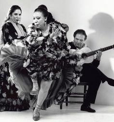 Il Flamenco, un affare di Famiglia  Gilles Larrain
