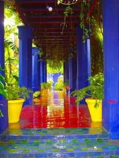 Ives Saint Laurent garden Marrakech