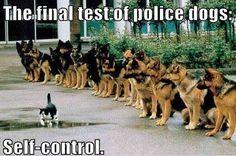 Auto control...muy importante en nuestra vida.