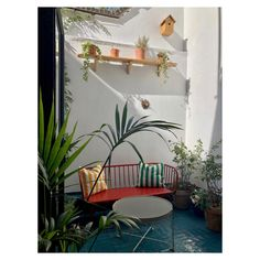 Small living Courtyard Garden with basket weave tile floor, London Basket Weave Tile, Basket Weaving, East London, First Home, Small Living, Tile Floor, Succulents, Indoor, Flooring