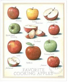 cook's illustrated back covers - Google Search