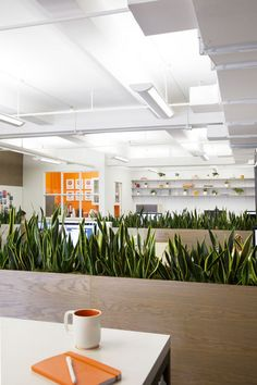 Studies have shown the colour green reduces stress -- we need more greenery in our work spaces!