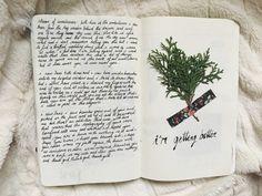 serafique: journal entries from some a week or so ago ig: serafique