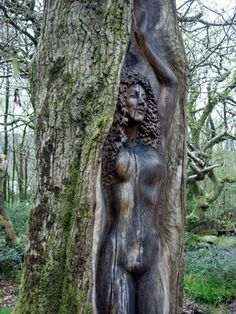 Druids Trees:  This beautiful oak-tree Goddess is dancing in the forest of Cae Mabon eco retreat in Snowdonia, Wales, and was created by the wood carver artist Peter Boyd.
