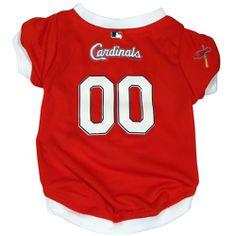 RadioFence.com - St. Louis Cardinals Dog Jersey, $27.95 (http://www.radiofence.com/st-louis-cardinals-dog-jersey/)