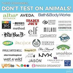 Cosmetic Companies, Makeup Companies, Vegan Makeup, Cruelty Free Makeup, Animal Testing, Vegan Beauty, Acne Skin, Tips Belleza, Makeup Brands