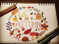 Fall is such a beautiful season. The colors, the leaves are overwhelming. The atmosphere is cosy. #autumn#autumnleaves #doodle #doodleart #creative #illustration #doodleartist #creativity #helloautumn #owl#hedgehog#leaves