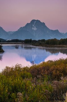 Reflections at Oxbow Bend, Grand Tetons NP