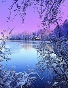 Love the colors and ice covered trees