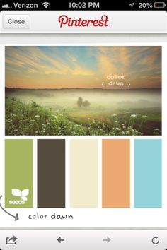 pretty much what our living room colors are