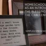 Homeschooling as an introvert: the blessings & challenges.