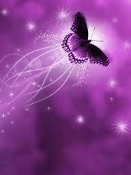 beautiful flutterbys