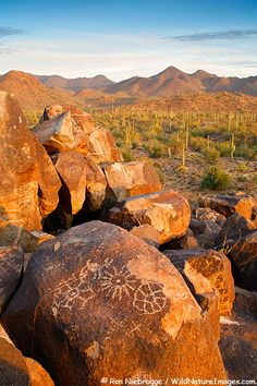Rock Art in Saguaro National Park, Tucson Mountain District, Saguaro West,  Tucson, Arizona, USA