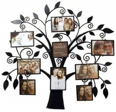 Cool Metal Tree Collage Frame: Home & Kitchen Family Tree Picture Frames, Family Tree With Pictures, Family Tree Photo, Collage Picture Frames, Family Tree Wall, Family Photos, Family Room, Tree Collage, Wall Collage