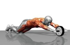 Five minutes a day with an ab wheel will firm and strengthen your entire abdominal and stomach area. The ab wheel can produce excellent results. It trains not only the abdominal muscles but the entire core, including the lower b Ab Wheel Workout, Ab Roller Workout, Best Ab Workout, Fitness Workouts, Sport Fitness, Ab Workouts, Ab Exercises, Health Fitness, Workout Bauch