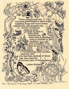 The Best Natural Toys are Nature Itself, Luther Burbank speaks to the importance of childhood exploration of the natural world.
