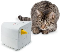 FroliCat Cheese - Automatic Cat Teaser The FroliCat Cheese is an automatic toy - two mice pop out of the side of the block of cheese, keeping your cat entertained for ages. Interactive Cat Toys, Pet Safe, Cat Supplies, Catio, Cat Furniture, Pet Toys, Kitten Toys, Cat Love, Cool Toys