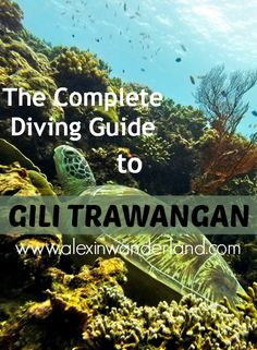 The Complete Diving Guide to Gili Trawangan, Indonesia | Alex in Wanderland #diving #scuba
