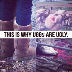 UGGs and Their 'UGGly' Reputation. This is disgusting.