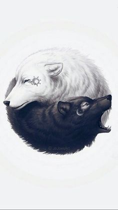 Ying and Yang Wolves Tumblr, Animals, Whale, Husky, Wallpaper For Phone, Wallpaper S, Stationery Shop, Street Art, Wallpapers
