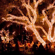 Outdoor wedding reception- Light it up!