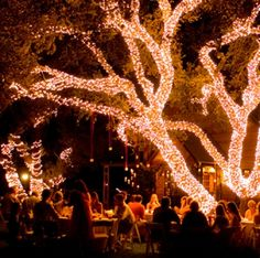 Outdoor wedding reception- Light it up!