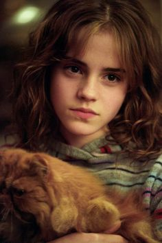 "Hermione calls the fighting with Ron about crookshanks and scabers ""the cat and rat thing"""