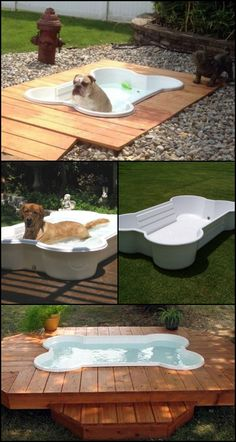 """Feeling very warm this summer? Your dog feels the same, if not worse because unlike humans, they (and cats) don't sweat at all!  http://amzn.to/28UvKlD  So it's important to make sure we are helping them cool off during these intense summer months!  One easy and fun solution is to let them swim in a pool. :)  This bone pool is especially made for dogs with its chew and UV resistant truck bed liner material. It measures 11""""x44""""x66"""" so that dogs of all sizes can use it!"""