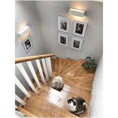 Spotkanie na szczycie 😉tylko takich życzę Wam na ten tydzień ☺️😘 . Home Stairs Design, Interior Stairs, Home Interior Design, House Design, Gallery Wall Staircase, Modern Staircase, Cottage Hallway, Hallway Inspiration, Staircase Makeover