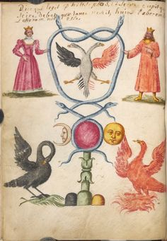 The serpent Mercurialis, double and twisted, rejoins the two principles of the work: the King sulfuric with the phoenix of fire, and the queen with mercurial pelican feeding its young with its blood, Figurarum Aegyptiorum Secretarum